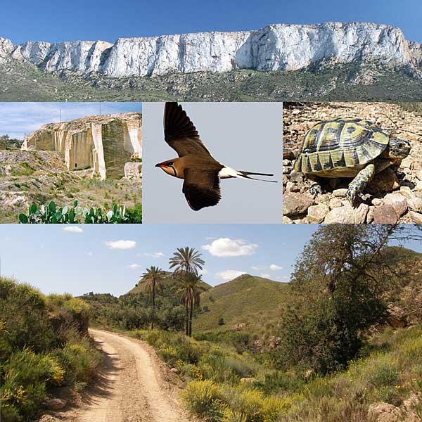 puzzle-reservas-sureste