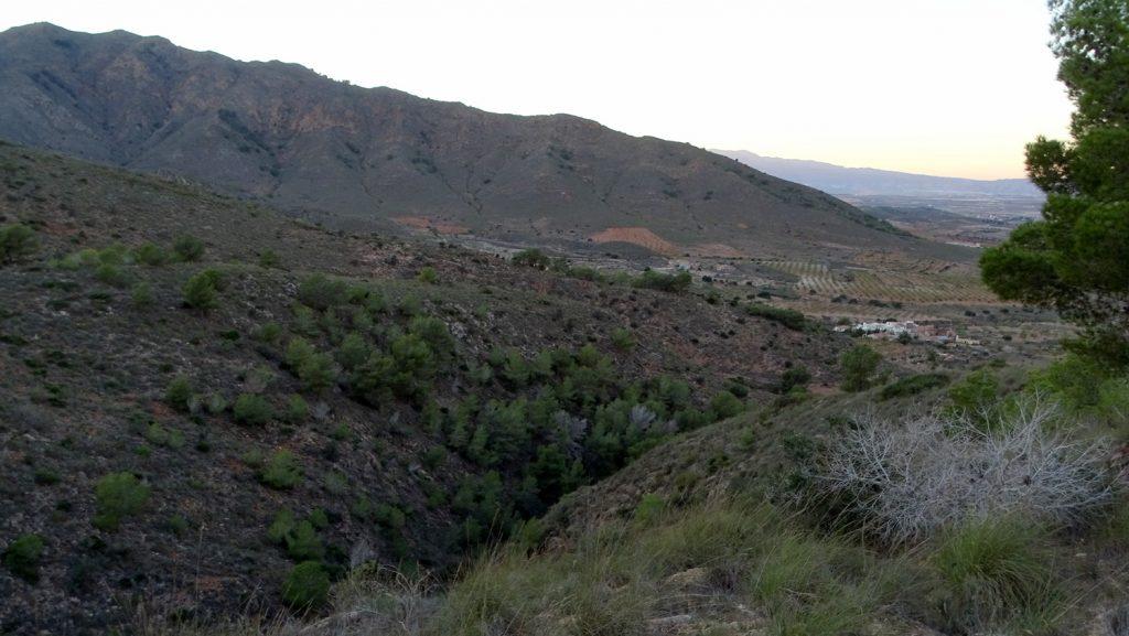 Montes de Mazarrón (Sierra del Algarrobo)